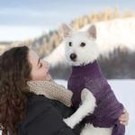 View Image 2 of Polaris Reflective Dog Sweater - Plum Purple