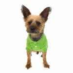 View Image 3 of Polo Dog Shirt - Parrot Green