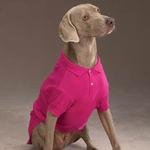 View Image 2 of Polo Dog Shirt - Raspberry Sorbet
