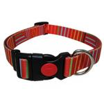 View Image 1 of Pop Stripe Dog Collar - Orange