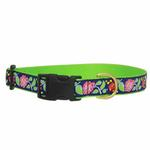 View Image 2 of Posey Dog Collar by Up Country