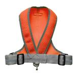 View Image 1 of Precision Sport Mesh Dog Harness - Orange