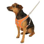 View Image 3 of Precision Sport Mesh Dog Harness - Orange