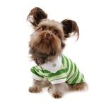 View Image 2 of PuppyPAWer Stripe Dog Polo by Dogo - Green