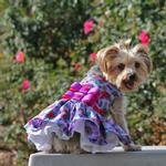 View Image 4 of Purple and Red Floral Dog Harness Dress by Doggie Design