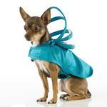 View Image 1 of Push Pushi Rainbow Line Dog Raincoat - Teal