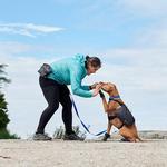 View Image 4 of Quick Grab Dog Treat Bag - Heather Black