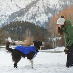 View Image 2 of Quinzee  Insulated Dog Jacket by RuffWear - Huckleberry Blue