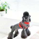 View Image 2 of Racer Dog Harness by Puppia - Red