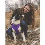 View Image 3 of RC Pet Baseline Fleece Dog Pullover - Purple and Pink