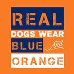 View Image 2 of Real Dogs Wear Blue and Orange Dog Shirt - Orange
