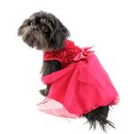 View Image 3 of Red Rose Pet Dress by Pawpatu