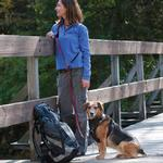 View Image 2 of Reflect and Protect Quantum Dog Leash by Kurgo - Raspberry