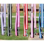 View Image 1 of Reflective Nylon Leash with Soft Grip Handle by Doggie Design - 3/4 in. Wide x 5 ft. Long