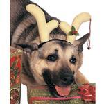 View Image 1 of Reindeer Antlers Dog Costume by Rubies