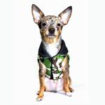 View Image 2 of Reversible Camo Puffer Dog Vest by Hip Doggie