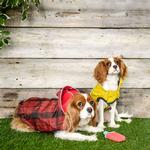 View Image 5 of Reversible Elasto-Fit Dog Raincoat - Scarlet Red