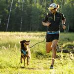 View Image 2 of Ridgeline Dog Leash by RuffWear - Granite Gray