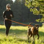 View Image 1 of Roamer Dog Leash by RuffWear - Orange Sunset