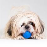 View Image 2 of Rogz Asteroidz Ball Dog Toy