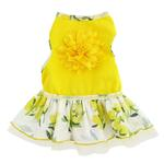 View Image 2 of Rose Print Dog Dress - Yellow