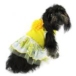 View Image 1 of Rose Print Dog Dress - Yellow