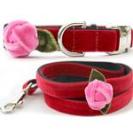 View Image 1 of Rosebud Red Velvet Small Dog Collar and Leash Set by Diva Dog