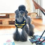 View Image 4 of Rowdy Dog Harness by Puppia - Black