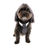 View Image 1 of Rubie's Halloween Skull Print Dog Tie