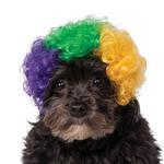 View Image 1 of Rubie's Mardi Gras Afro Dog Wig