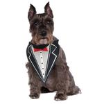 View Image 1 of Rubie's Tuxedo Dog Bandana