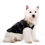 View Image 1 of Ruched Bubble Dog Jacket by Dogo - Black