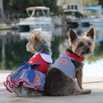 View Image 4 of Sailor Girl Dog Harness Dress by Doggie Design