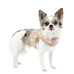View Image 2 of Sassa Dog Harness Vest by Pinkaholic - Beige