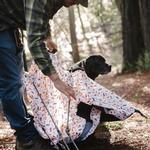 View Image 4 of Scout and About Outdoor Dog Tent - Vanilla