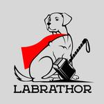 View Image 2 of Labrathor Dog Shirt - Gray