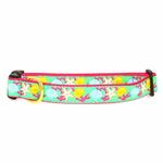View Image 1 of Reef Dog Collar by Up Country