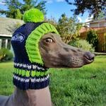 View Image 3 of Seattle Seahawks Knit Dog Hat