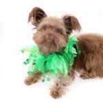 View Image 2 of Shamrock Smoocher Pet Scrunchie