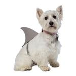 View Image 2 of Shark Fin Dog Costume by Rasta Imposta