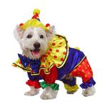 View Image 3 of Shiny Clown Dog Costume