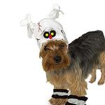 View Image 1 of Skeleton Halloween Dog Costume Hat