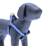 View Image 1 of Skully Dog Harness by Up Country
