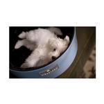 View Image 2 of Sleepypod Mobile Pet Bed Ultra Plush Bedding - Black