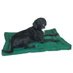 View Image 1 of Slumber Pet Water-Resistant Dog Bed - Green