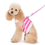 View Image 6 of SnapGo Polo Girl Dog Harness by Dogo