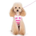 View Image 5 of SnapGo Polo Girl Dog Harness by Dogo