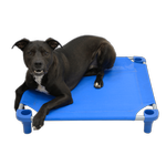 View Image 1 of Solid Color Premium Weave Dog Cot - Blue