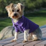 View Image 1 of Solid Dog Polo by Doggie Design - Ultra Violet