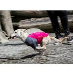 View Image 3 of Solis UV Coverup Dog Shirt - Raspberry